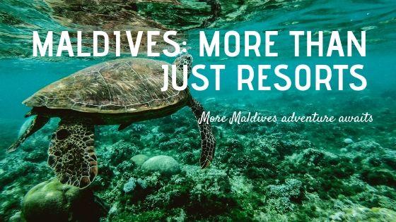 MaldivesMore Than Just Resorts